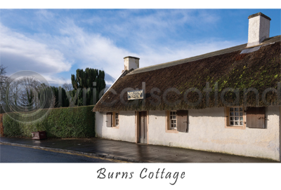 Burns Cottage Postcard (HA6)