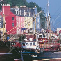 Tobermory, Isle of Mull Greetings Card (CB)