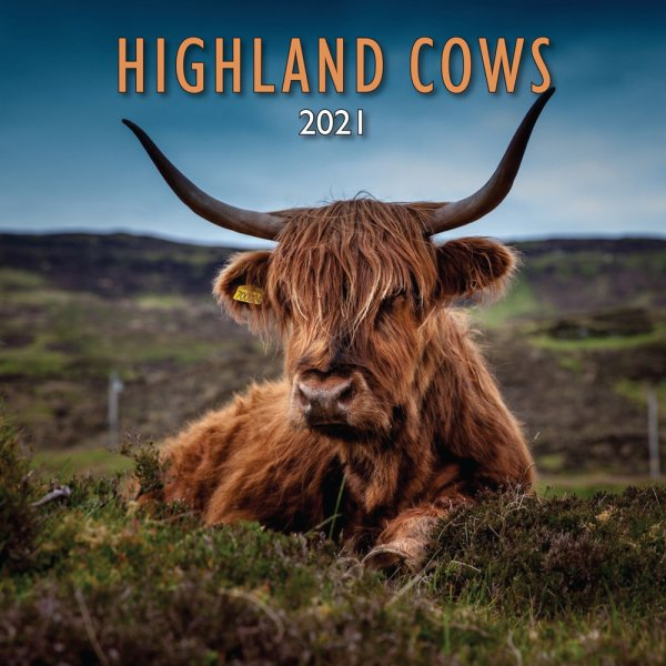 2021 Calendar Highland Cows (Mar)