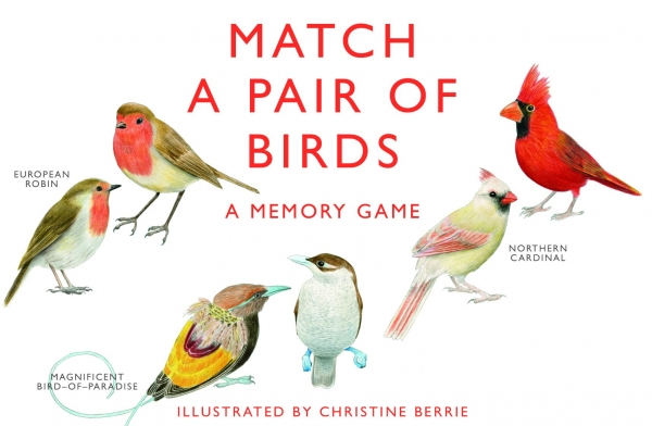 Match a Pair of Birds: Memory Game