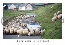 Rush Hour In Scotland (HA6)