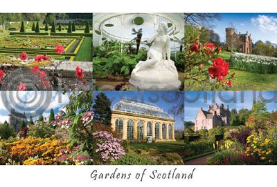 Scottish Gardens Composite (HA6)