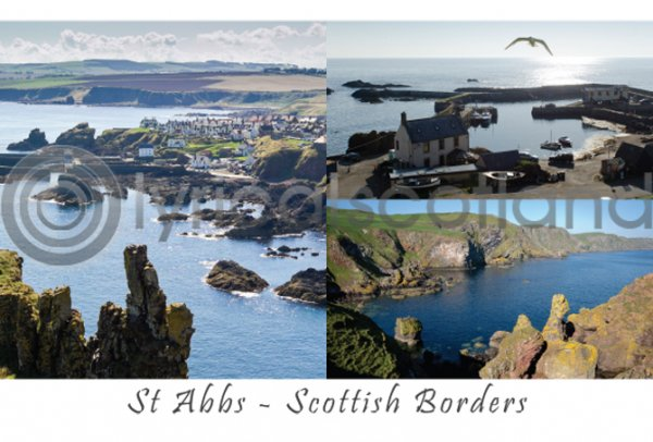 St Abbs Composite Postcard (H A6 LY)